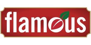 Flamous