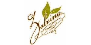 Zalvina