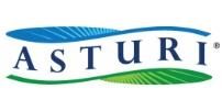 Asturi