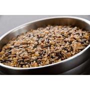 InHarvest Whole Grain 5 Blend Rice, 2 Pound -- 6 per case
