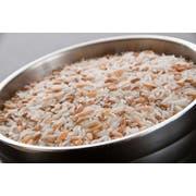 InHarvest Basmati Blend Rice, 2 Pound -- 6 per case