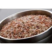 InHarvest Mountain Red Blend Rice, 2 Pound -- 6 per case