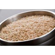 InHarvest Brown Basmati Rice, 2 Pound -- 6 per case