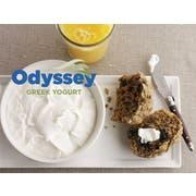 Odyssey 10 Percent Plain Greek Yogurt, 45 Pound -- 1 each