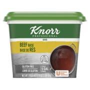 Knorr Professional 095 Beef Stock Base, 1 pound -- 12 per case
