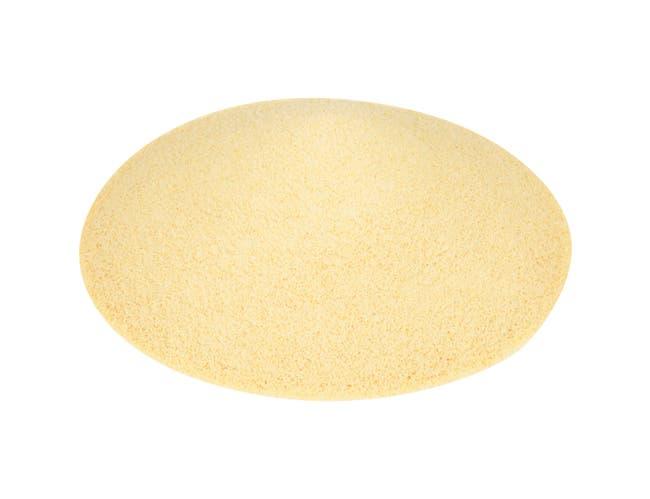 Spice Spice Classics Garlic Powder - 5.25 lb. container, 3 per case