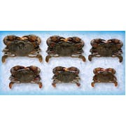 Handy Soft Shell Wild Caught Whale Crab, 4 Ounce -- 36 per case