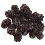 Commodity Fruit Whole Blackberry, 30 Pound -- 1 each.