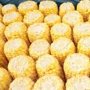 Commodity Vegetables Corn Cob, 5 inch -- 48 per case.