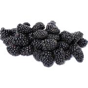 Commodity Fruit Whole Marionberry Fruit, 30 Pound -- 1 each.