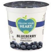 Follow Your Heart Dairy Free Blueberry Yogurt, 5.3 Ounce -- 12 per case