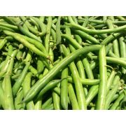 Commodity Canned Fruit and Vegetables Extra Standard 4 Sieve Green Bean, Number 10 Can -- 6 per case