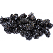 Commodity Fruit Whole Marionberry Fruit, 30 Pound -- 1 each.