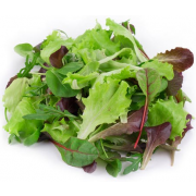 Commodity Canned Fruit and Vegetables Mixed Greens, 10 Pound -- 6 per case