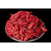 Sea Best Whole Cooked Crawfish, 5 Pound -- 2 per case.