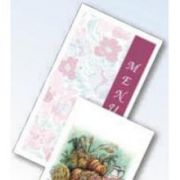 Dinex Janes Bouquet 3 Panel Patient Stock Menu Shell - Blank, No Heading, 8 1/2 x 14 inch -- 2000 per case.