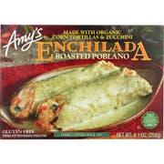 Amy's Organic Roasted Poblano Enchilada, 9.1 Ounce -- 12 per case