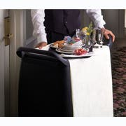 Carlisle Polypropylene Black Doors and Panels Only, 12.38 x 1.75 inch -- 1 each.