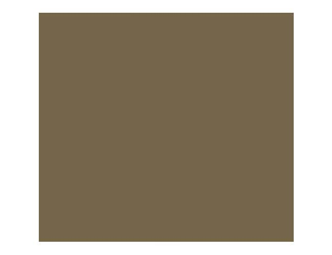 Cambro Bayleaf Brown Rectangular Camtray, 8 7/8 x 25 9/16 inch -- 12 per case.