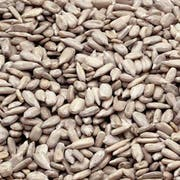 Bakers Select Sunflower Kernels, Raw  , 5 Pound -- 1 Case